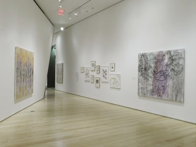 Brooklyn museum: ghada amer its primary meaning is occupying