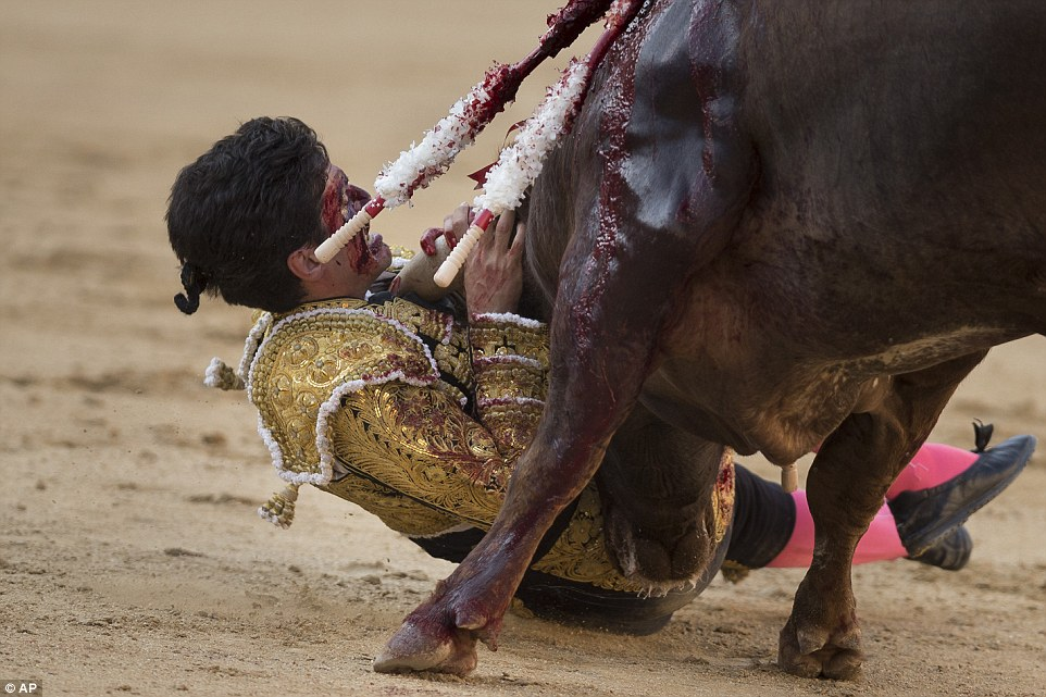 Bullfighting divides the country over its bloody tradition on other activities which are