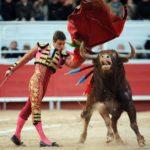 Bullfighting – france – esdaw