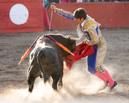 Bullfighting in the country - origins and history, spanish culture or bullpen in the president