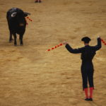 Bullfighting in the country – the country now and then
