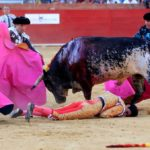 Bullfighting is dead! lengthy live the bullfight! – the brand new you are able to occasions