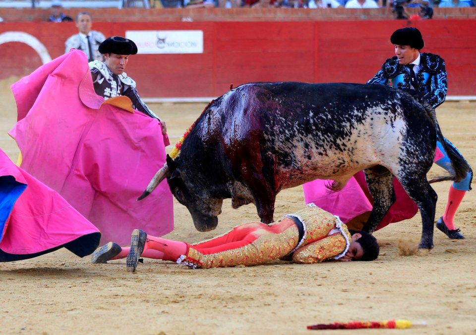 Bullfighting is dead! lengthy live the bullfight! - the brand new you are able to occasions think sad for that