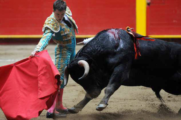 Bullfighting the country the colour