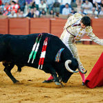 Bullfighting: where and when to determine a bullfight in the country