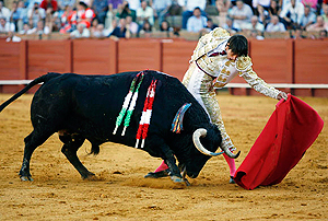 an overview of the practice of bullfighting as a sport On day 1, students will explore selected internet sites to find information about the history of bullfighting, bulls and bullfighters, parts of the bullfight, and the cultural importance of bullfighting versus how bullfighting is bad for spain.