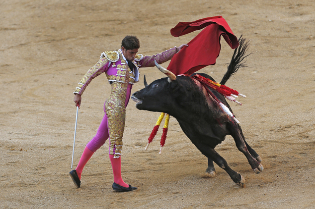 Bullfights in the country Regardless of whether you