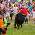 Ending centuries of tradition, a bull survives a spanish festival : parallels : npr