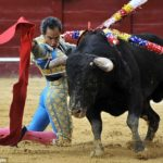 Exactly what do you put on to some bullfight?