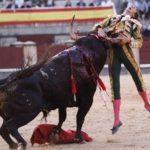 Junk described: what's bullfighting, why is still it around? – junkee