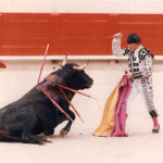 The finish of bullfighting?