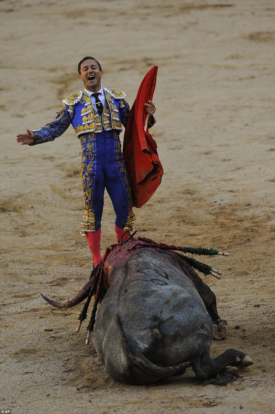 The finish of bullfighting? the thought