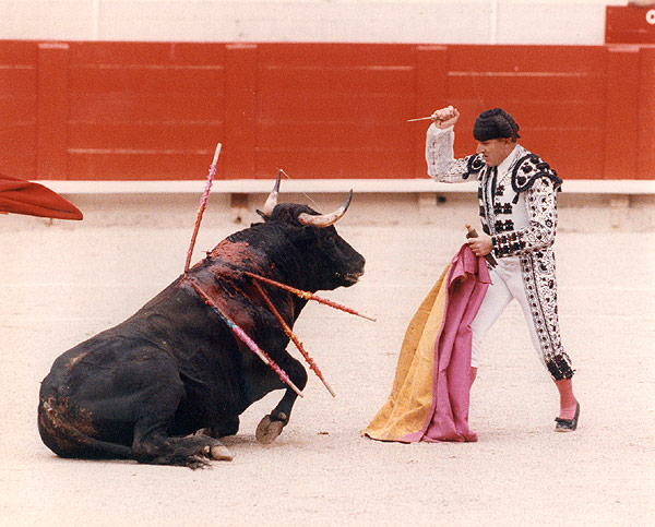 The finish of bullfighting? Not in the near
