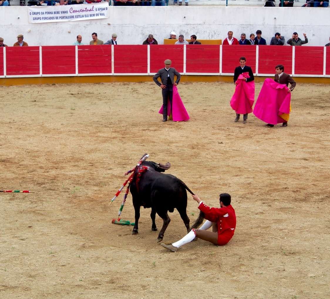 The finish of bullfighting? with believed worldwide revenues of