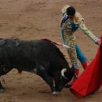 The spanish bullfight: a choreographed and questionable spectacle