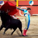 The twisted temptations of bullfighting in peru
