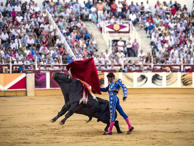 Thousands in spain's madrid demand bullfighting ban as she